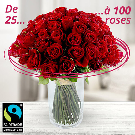 100 roses rouges