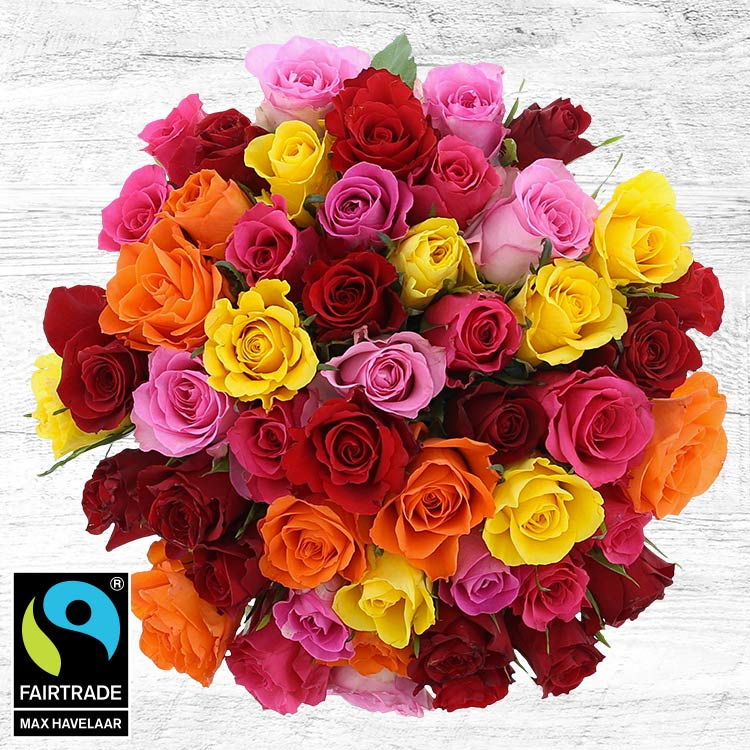 <b>Bonnes affaires</b> - 50 ROSES MULTICOLORES -