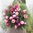 Collection Hiver> -LOVE TULIPES XXL -