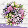 purple-love-3913.jpg