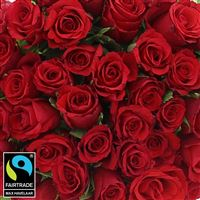 40-roses-rouges-200-5292.jpg