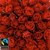 bouquet-de-roses-rouges-sur-mesure-200-5304.jpg